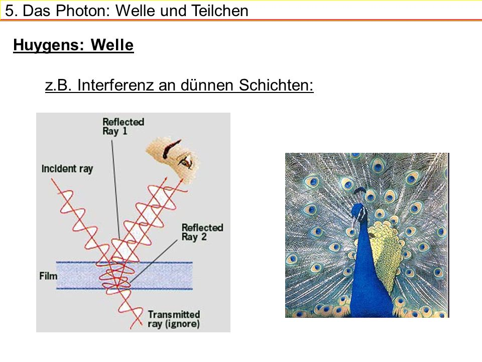5. Das Photon: Welle und Teilchen Welche Art Welle?