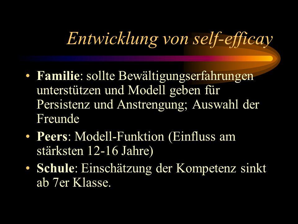 Entwicklung von self-efficay Familie: sollte Bewältigungserfahrungen unterstützen und Modell geben für Persistenz und Anstrengung; Auswahl der Freunde