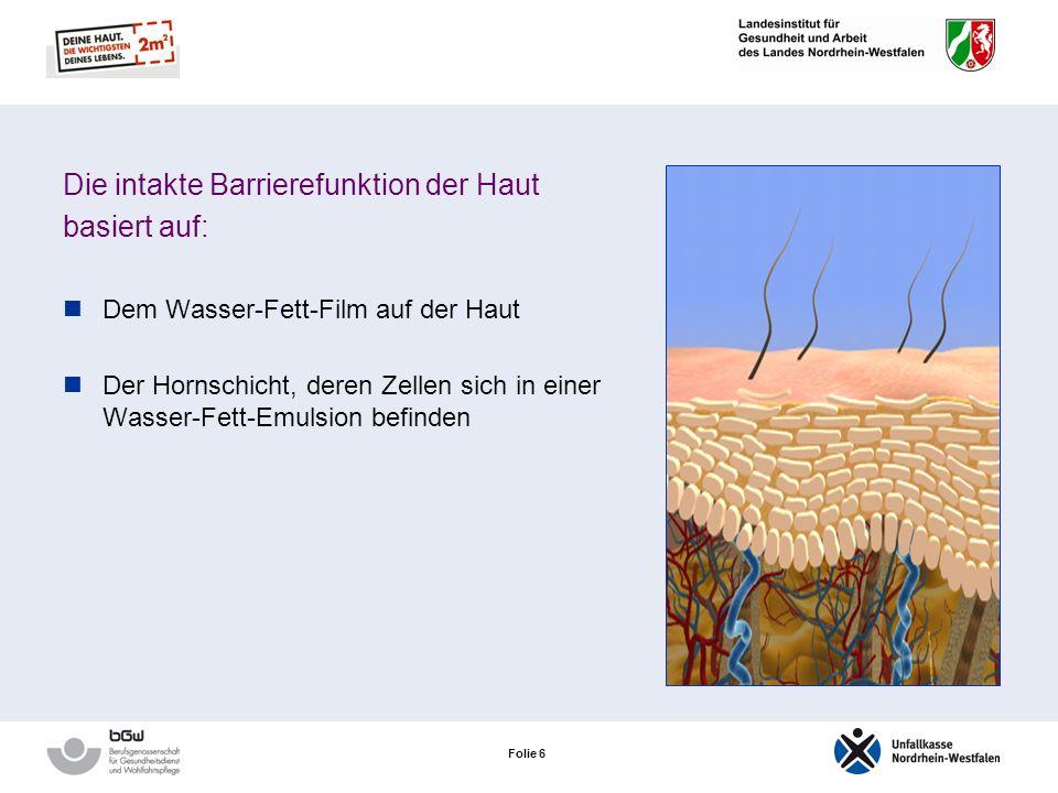 Folie 5 Die Barrierefunktion der Haut Barrierefunktion der Hornschicht Abwehr von Fremdstoffen (Chemikalien, Bakterien, Pilze, Viren) Verhindert den V