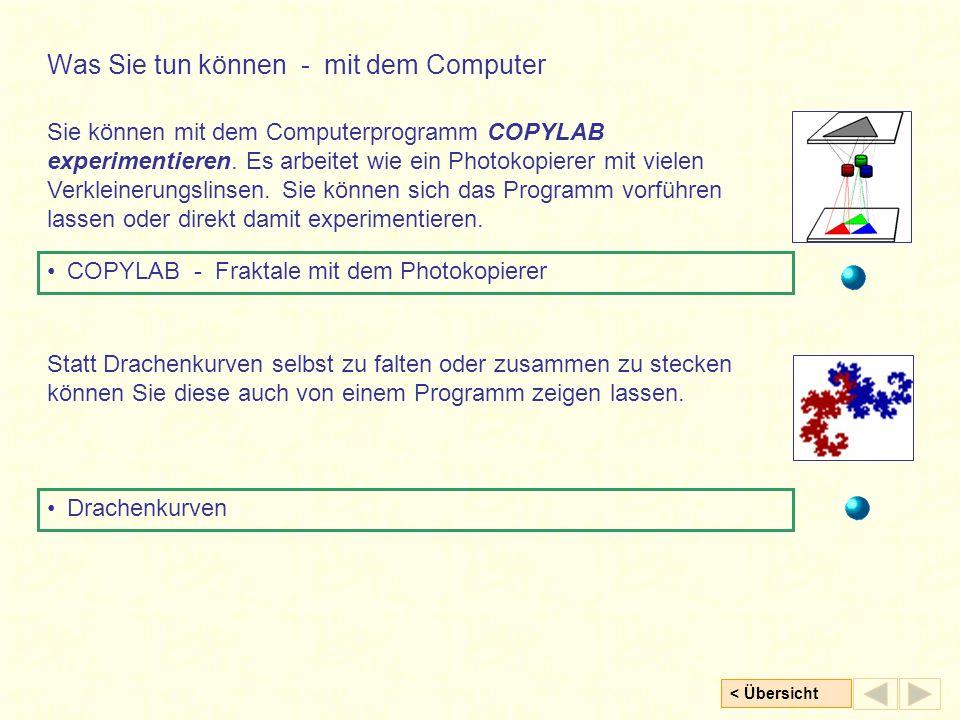 < Übersicht Sie können mit dem Computerprogramm COPYLAB experimentieren.