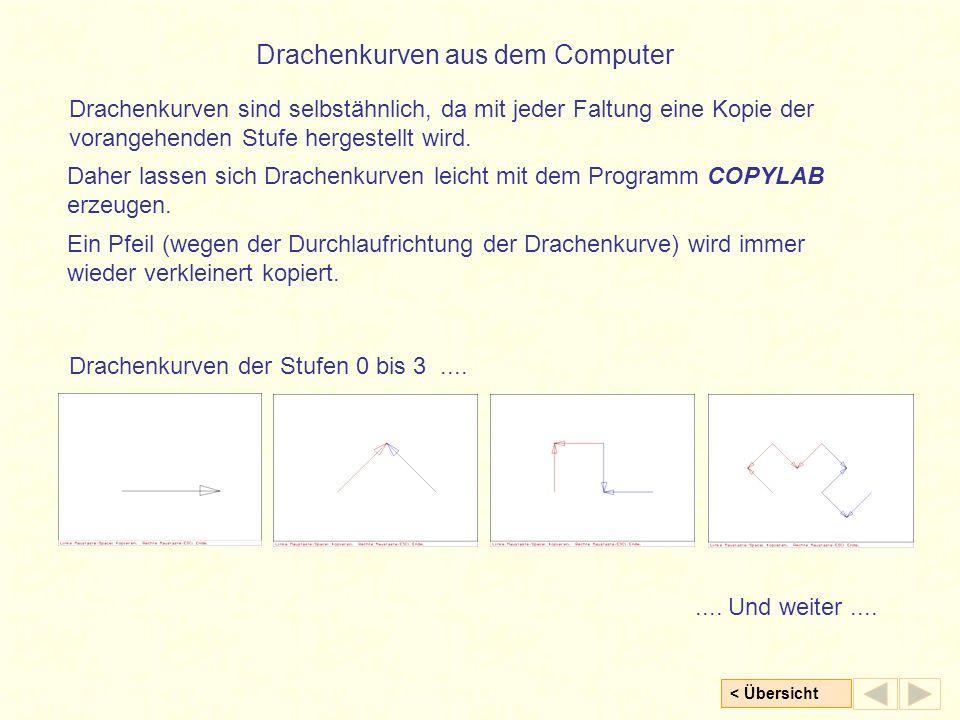 < Übersicht Drachenkurven aus dem Computer Ein Pfeil (wegen der Durchlaufrichtung der Drachenkurve) wird immer wieder verkleinert kopiert. Daher lasse