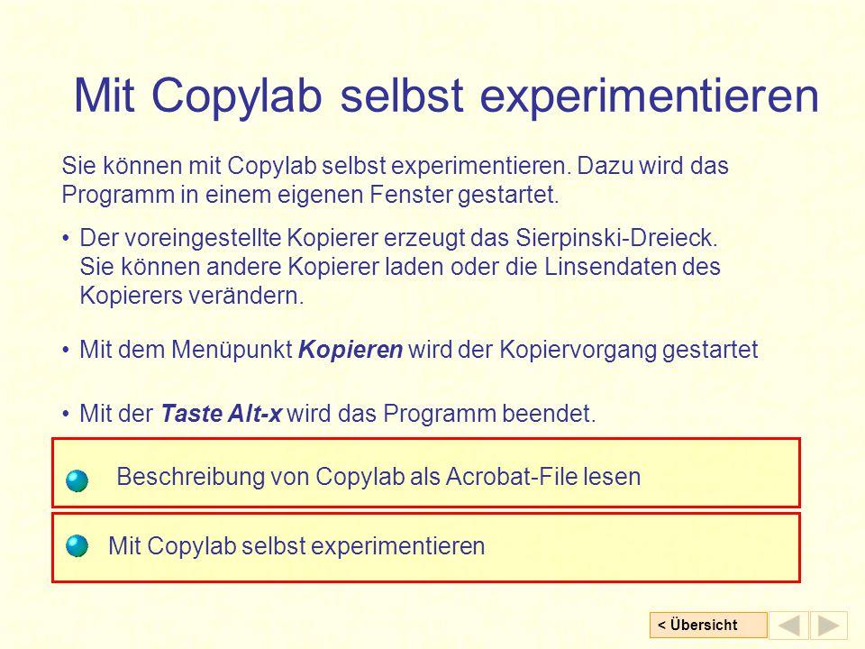 < Übersicht Mit Copylab selbst experimentieren Sie können mit Copylab selbst experimentieren. Dazu wird das Programm in einem eigenen Fenster gestarte