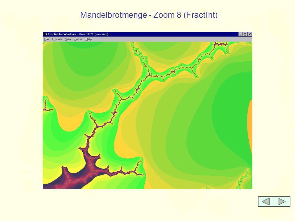 Mandelbrotmenge - Zoom 8 (FractInt)