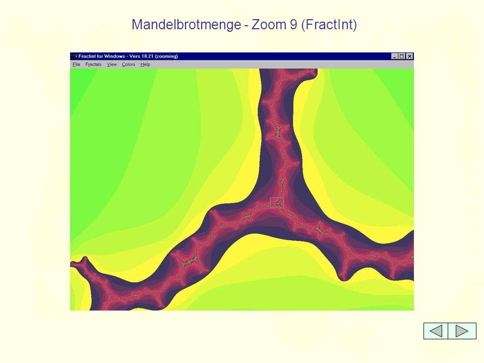 Mandelbrotmenge - Zoom 9 (FractInt)