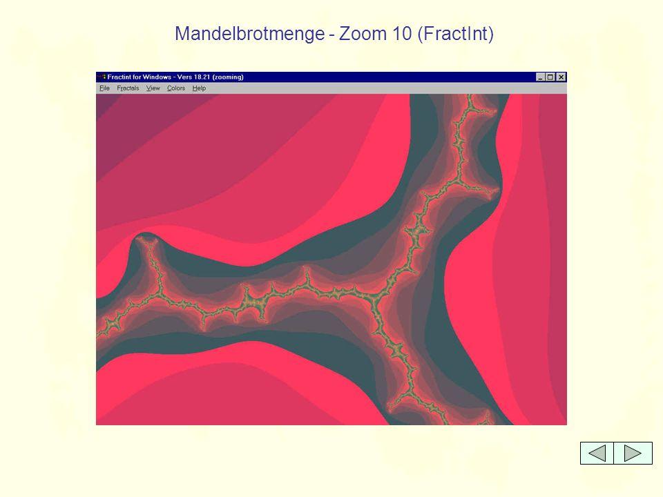Mandelbrotmenge - Zoom 10 (FractInt)