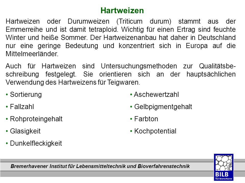 Bremerhavener Institut für Lebensmitteltechnik und Bioverfahrenstechnik Dateinamen Hartweizen Hartweizen oder Durumweizen (Triticum durum) stammt aus