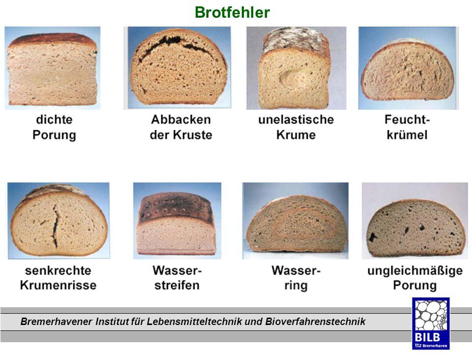 Bremerhavener Institut für Lebensmitteltechnik und Bioverfahrenstechnik Dateinamen Brotfehler