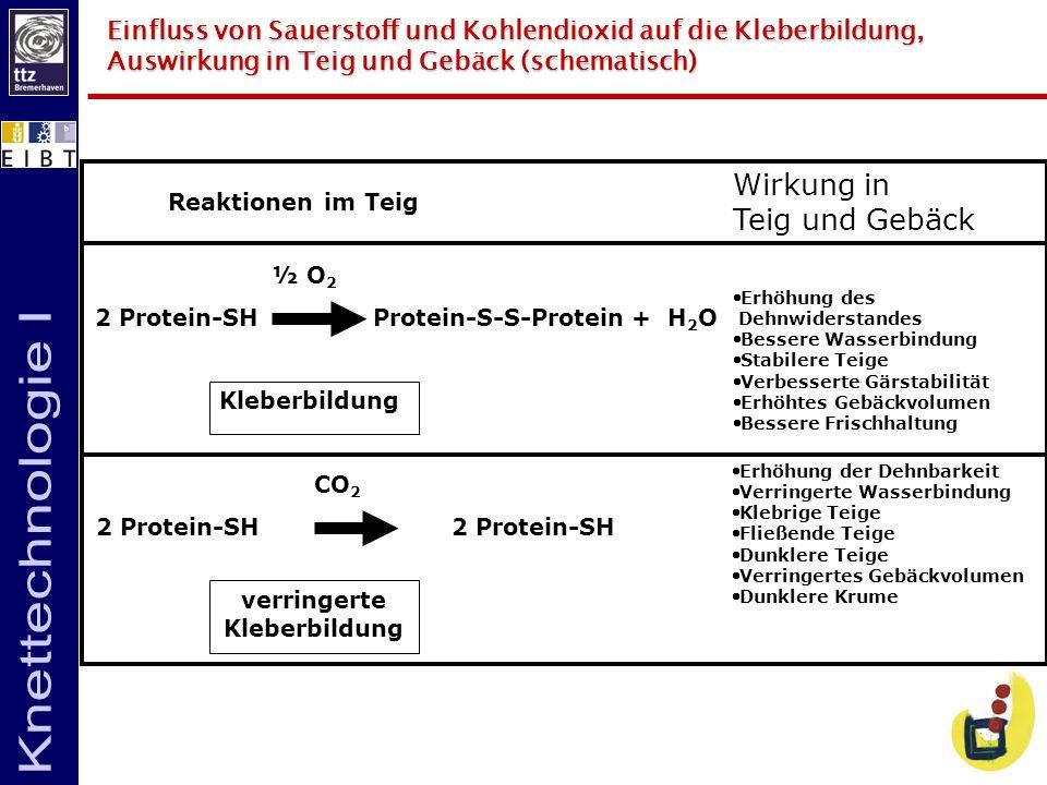 Einfluss von Sauerstoff und Kohlendioxid auf die Kleberbildung, Auswirkung in Teig und Gebäck (schematisch) Reaktionen im Teig Wirkung in Teig und Geb