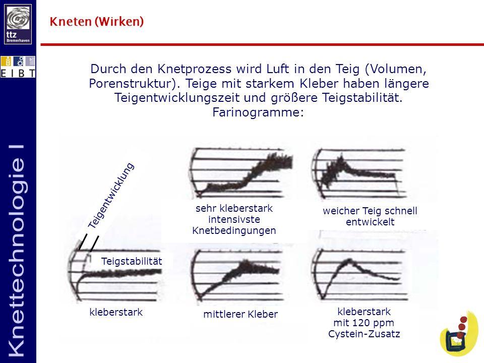 Kneten (Wirken) Durch den Knetprozess wird Luft in den Teig (Volumen, Porenstruktur). Teige mit starkem Kleber haben längere Teigentwicklungszeit und