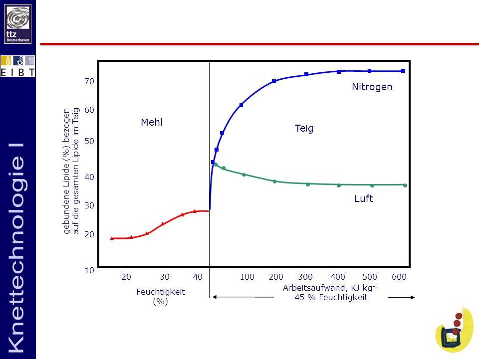 Mehl Teig Nitrogen Luft 70 60 50 40 30 20 10 20 30 40 100 200 300 400 500 600 Feuchtigkeit (%) Arbeitsaufwand, KJ kg -1 45 % Feuchtigkeit gebundene Li