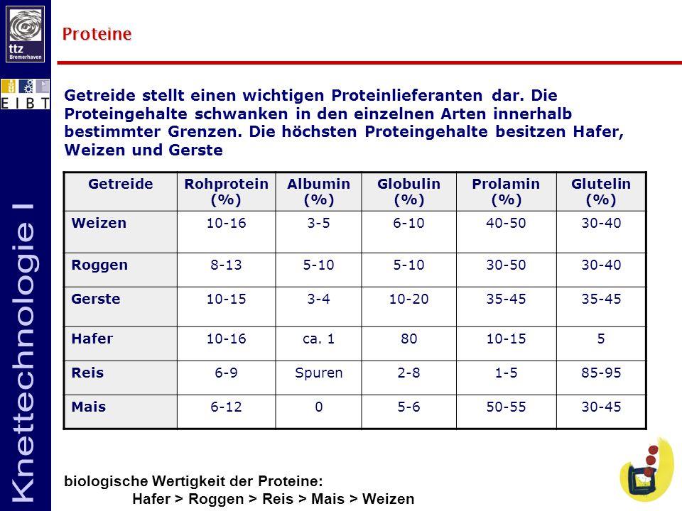 GetreideRohprotein (%) Albumin (%) Globulin (%) Prolamin (%) Glutelin (%) Weizen10-163-56-1040-5030-40 Roggen8-135-10 30-5030-40 Gerste10-153-410-2035