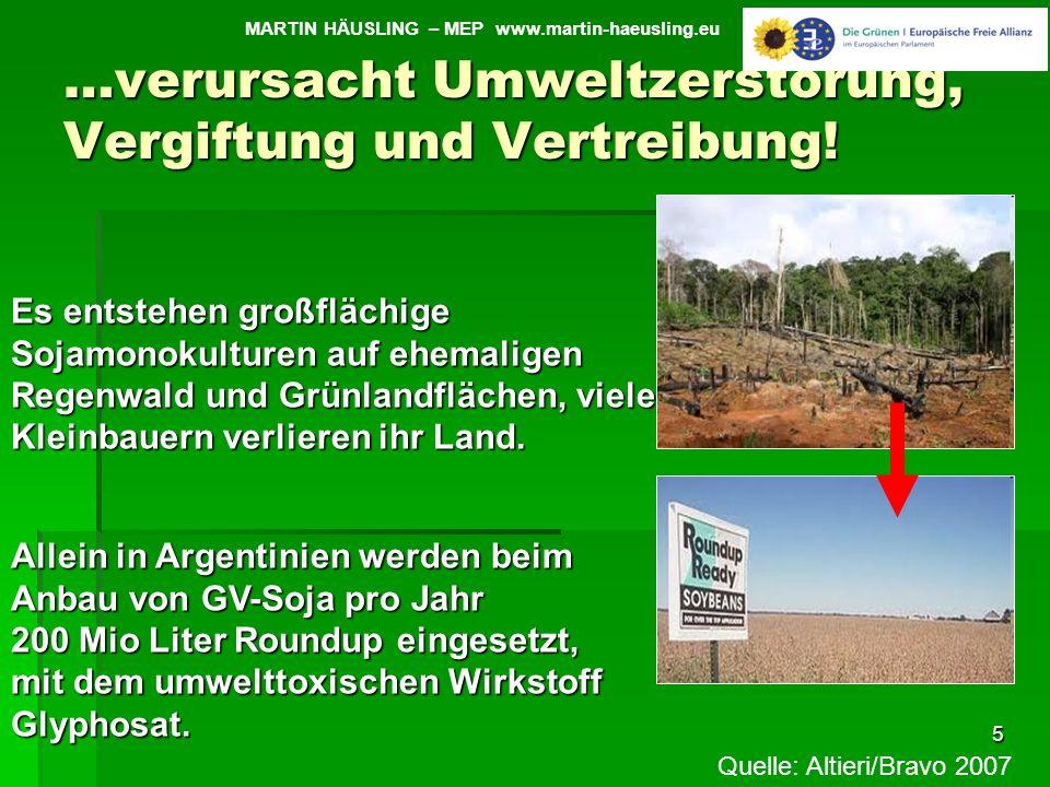 …verursacht Umweltzerstörung, Vergiftung und Vertreibung! 5 MARTIN HÄUSLING – MEP www.martin-haeusling.eu Es entstehen großflächige Sojamonokulturen a