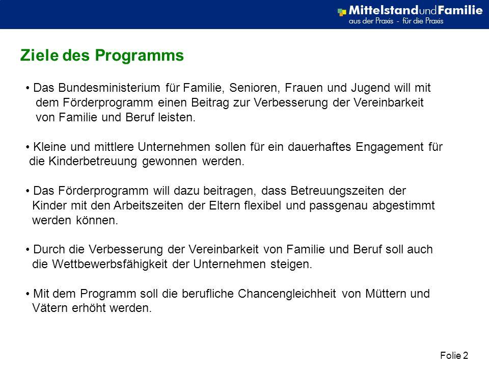 Folie 2 Ziele des Programms Das Bundesministerium für Familie, Senioren, Frauen und Jugend will mit dem Förderprogramm einen Beitrag zur Verbesserung der Vereinbarkeit von Familie und Beruf leisten.