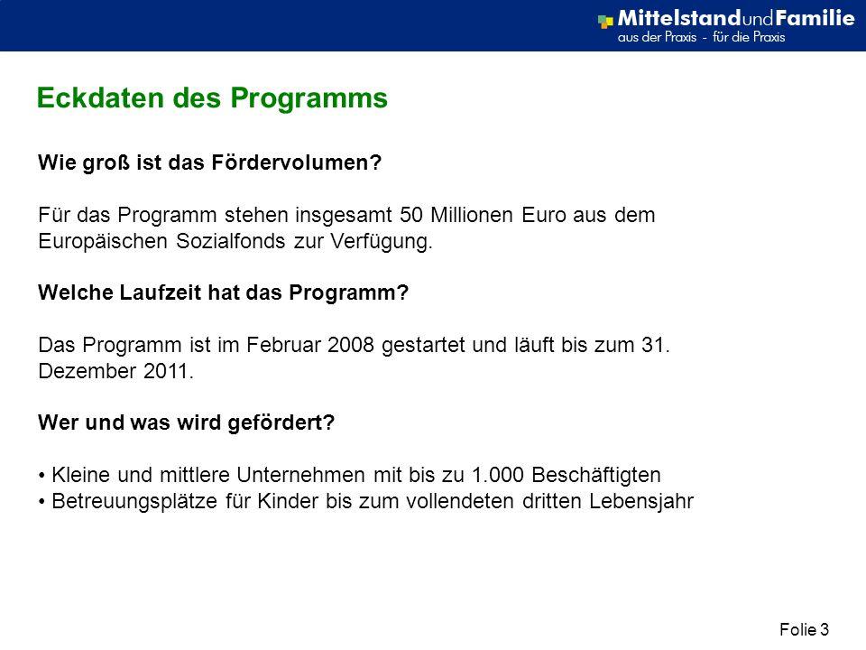 Folie 3 Eckdaten des Programms Wie groß ist das Fördervolumen? Für das Programm stehen insgesamt 50 Millionen Euro aus dem Europäischen Sozialfonds zu