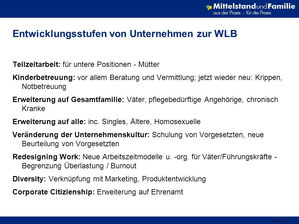 Seite 13 Entwicklungsstufen von Unternehmen zur WLB Teilzeitarbeit: für untere Positionen - Mütter Kinderbetreuung: vor allem Beratung und Vermittlung