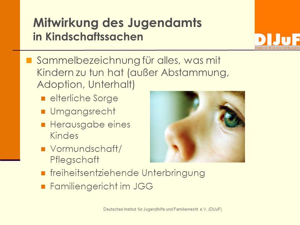 Deutsches Institut für Jugendhilfe und Familienrecht e.V. (DIJuF) Mitwirkung des Jugendamts in Kindschaftssachen Sammelbezeichnung für alles, was mit