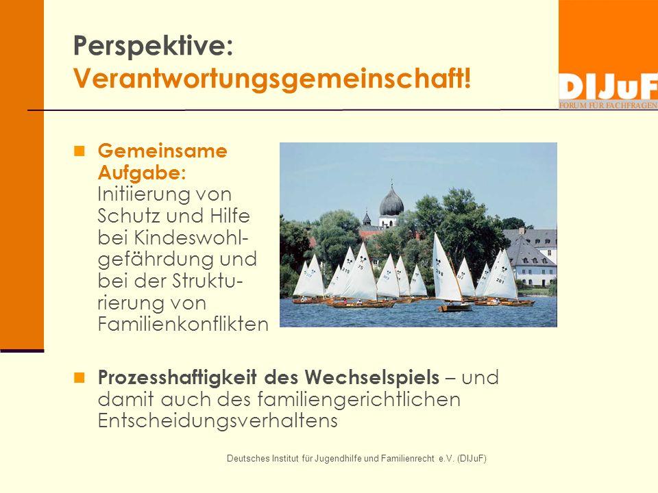 Deutsches Institut für Jugendhilfe und Familienrecht e.V. (DIJuF) Perspektive: Verantwortungsgemeinschaft! Gemeinsame Aufgabe: Initiierung von Schutz