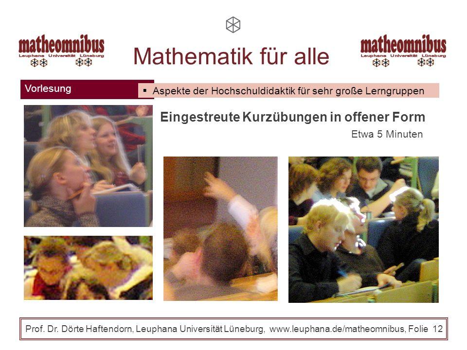 Vorlesung Prof. Dr. Dörte Haftendorn, Leuphana Universität Lüneburg, www.leuphana.de/matheomnibus, Folie 11 Mathematik für alle Aspekte der Hochschuld
