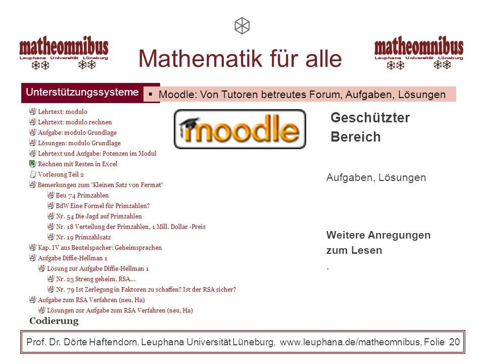 Unterstützungssysteme Prof. Dr. Dörte Haftendorn, Leuphana Universität Lüneburg, www.leuphana.de/matheomnibus, Folie 19 www.leuphana.de/matheomnibus A