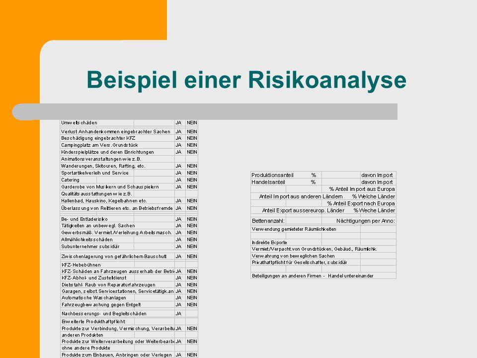 Beispiel einer Risikoanalyse