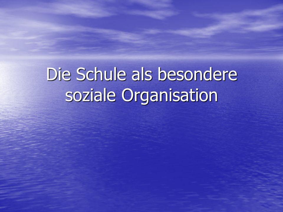Die Schule als besondere soziale Organisation