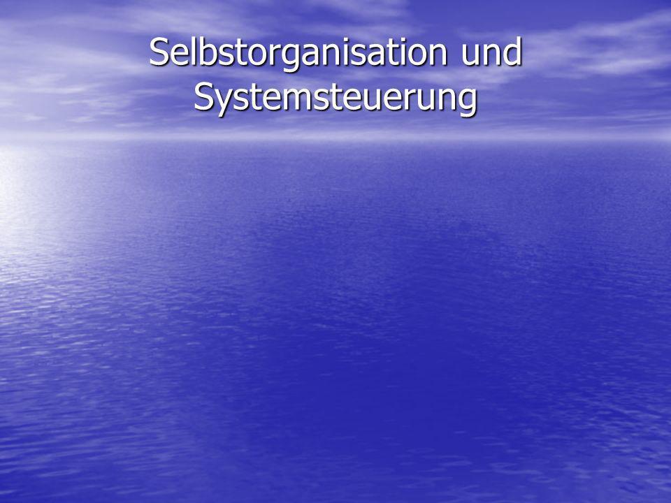 Konzepte des Organisations-Lernens wie Deutero-Lernen oder Erhöhung der Problemlösekapazität laufen auf Selbstorganisation oder Selbstregulierung hinaus.