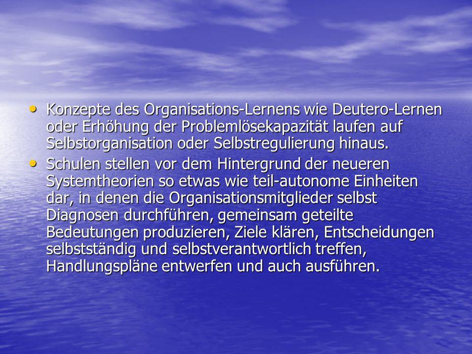 Literatur Rolff, Hans-Günter: Wandel durch Selbstorganisation; Juventa-Verlag; München 1995 Rolff, Hans-Günter: Wandel durch Selbstorganisation; Juventa-Verlag; München 1995