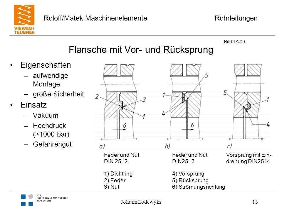 Rohrleitungen Roloff/Matek Maschinenelemente Johann Lodewyks13 Flansche mit Vor- und Rücksprung Eigenschaften –aufwendige Montage –große Sicherheit Ei