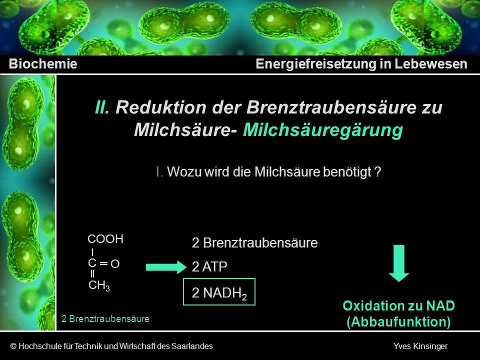 Biochemie Energiefreisetzung in Lebewesen © Hochschule für Technik und Wirtschaft des Saarlandes Yves Kinsinger 2 Brenztraubensäure CH 3 C COOH O 2 Br