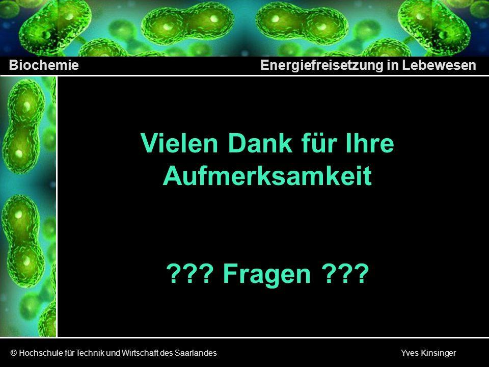 Biochemie Energiefreisetzung in Lebewesen © Hochschule für Technik und Wirtschaft des Saarlandes Yves Kinsinger Vielen Dank für Ihre Aufmerksamkeit ??