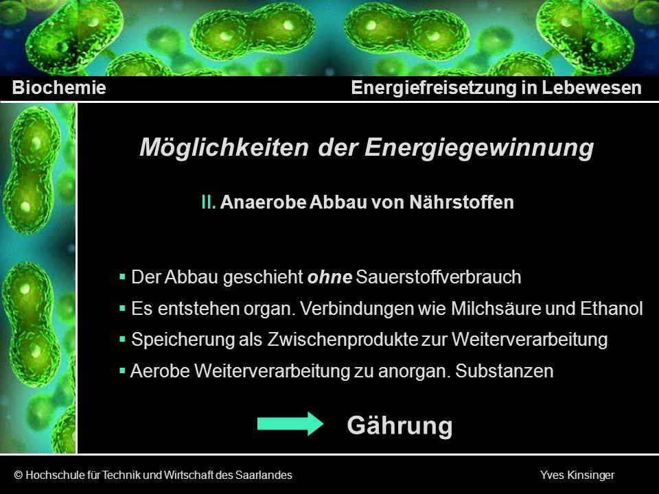 Biochemie Energiefreisetzung in Lebewesen © Hochschule für Technik und Wirtschaft des Saarlandes Yves Kinsinger I.
