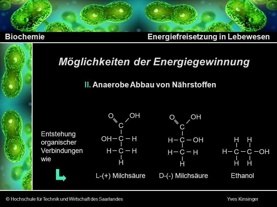 Biochemie Energiefreisetzung in Lebewesen © Hochschule für Technik und Wirtschaft des Saarlandes Yves Kinsinger Möglichkeiten der Energiegewinnung III.Verarbeitung der Nährstoffe Verdauung Atmung Gärung Abbau der NährstoffeResorption Aufnahme und Weiter - leitung von Monomeren (Grundbausteine)