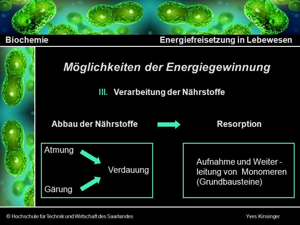 Biochemie Energiefreisetzung in Lebewesen © Hochschule für Technik und Wirtschaft des Saarlandes Yves Kinsinger AusgangsstoffEnolasePyruvatkinase I.