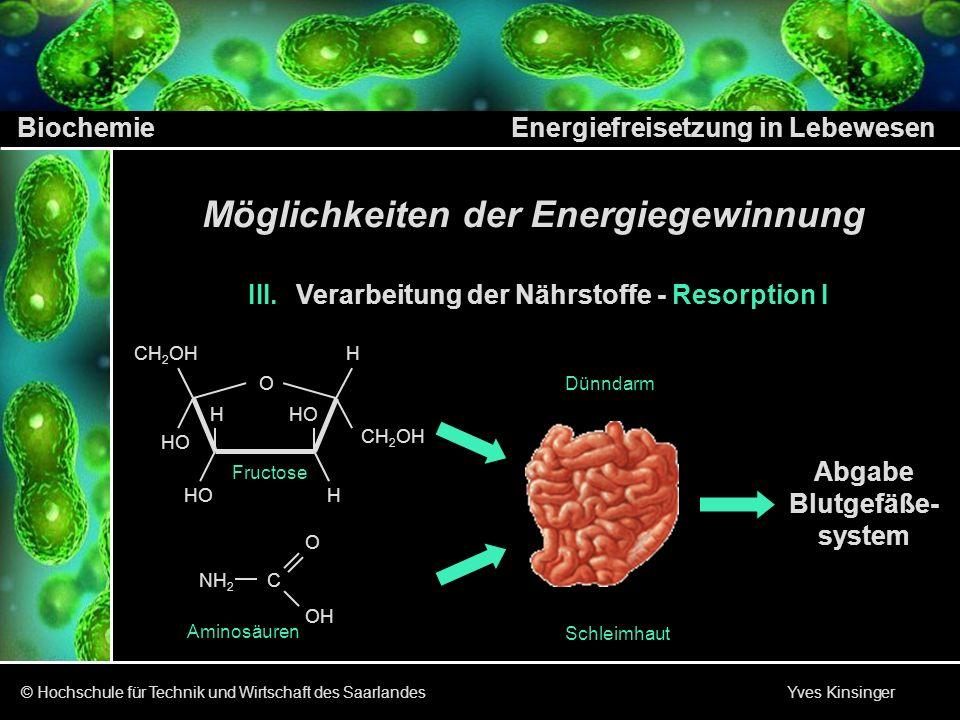 Biochemie Energiefreisetzung in Lebewesen © Hochschule für Technik und Wirtschaft des Saarlandes Yves Kinsinger AusgangsstoffEnol- TautomerieEndprodukt I.
