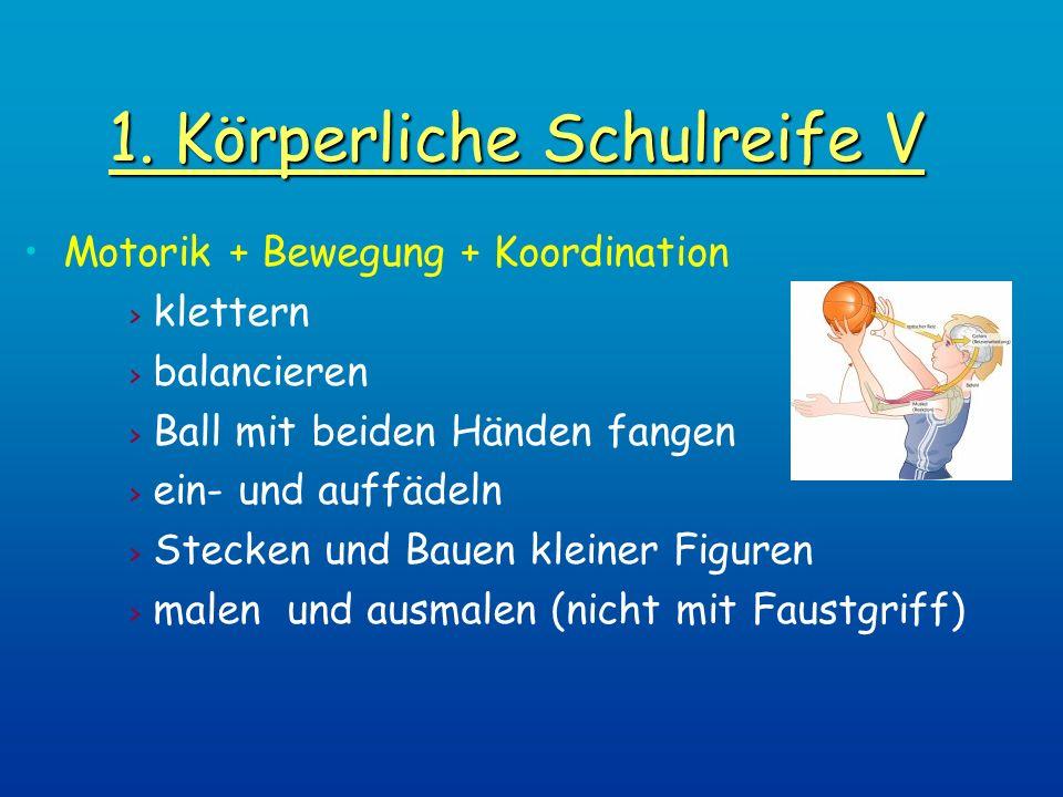 1. Körperliche Schulreife V Motorik + Bewegung + Koordination > klettern > balancieren > Ball mit beiden Händen fangen > ein- und auffädeln > Stecken
