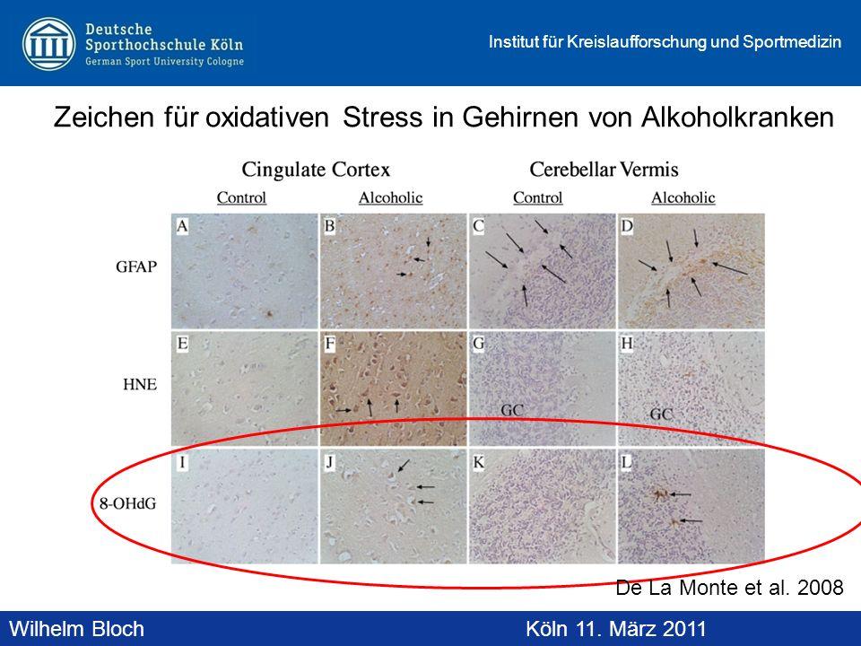 Wilhelm BlochAltenberg, 19. November 2010 Institut für Kreislaufforschung und Sportmedizin Wilhelm BlochKöln 11. März 2011 Zeichen für oxidativen Stre