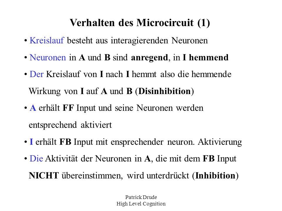 Patrick Drude High Level Cognition Verhalten des Microcircuit (1) Kreislauf besteht aus interagierenden Neuronen Neuronen in A und B sind anregend, in