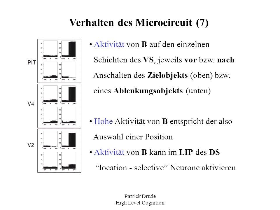 Patrick Drude High Level Cognition Verhalten des Microcircuit (7) Aktivität von B auf den einzelnen Schichten des VS, jeweils vor bzw. nach Anschalten