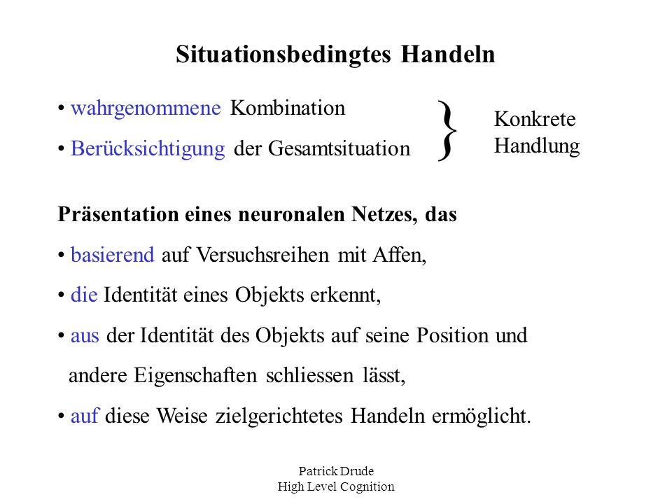 Patrick Drude High Level Cognition Vorgehensweise: Ausführung im Ventral Stream (VS) und im Dorsal Stream (DS).