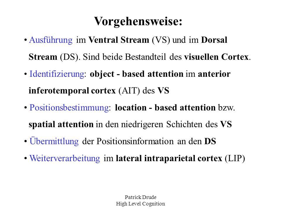 Patrick Drude High Level Cognition Eigenschaften des Feedback Netzes FB hat besteht aus denselben Schichten wie FF\{V1}, die Informationen werden aber top - down verarbeitet FB wurde mit der Hebbian - learning rule trainiert, jedes Objekt an jedem Ort zu erkennen Grundlage hierfür bildeten die neuronalen Aktivitäts- muster im FF Netz