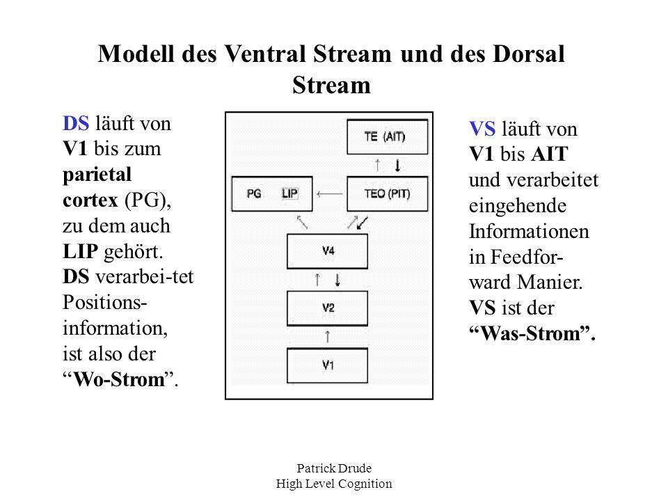 Patrick Drude High Level Cognition Modell des Ventral Stream und des Dorsal Stream VS läuft von V1 bis AIT und verarbeitet eingehende Informationen in