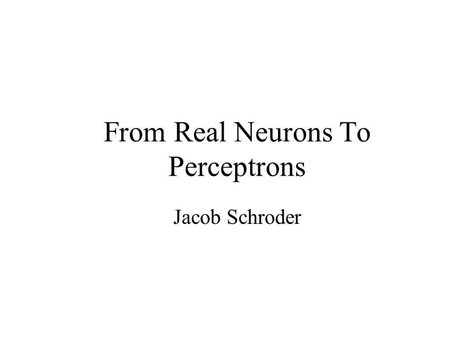 Überblick Die Modellierung eines echten biologischen Neuron Die bio-chemische elektrische Eigenscaften eines Neuron Wie diese Eigenschaften sich modellieren lassen Fazit: Perceptron != Neuron Frage: Gibt es eine Biologische Analogie von Perceptrons.