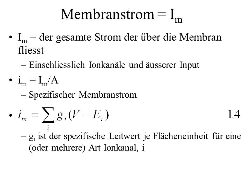 Membranstrom = I m I m = der gesamte Strom der über die Membran fliesst –Einschliesslich Ionkanäle und äusserer Input i m = I m /A –Spezifischer Membr