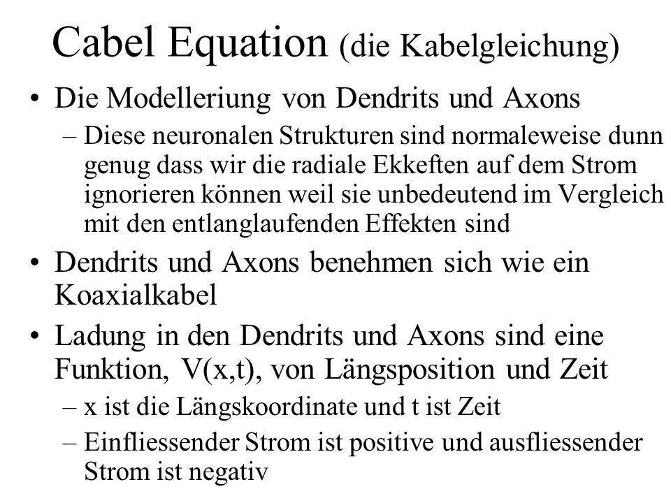Cabel Equation (die Kabelgleichung) Die Modelleriung von Dendrits und Axons –Diese neuronalen Strukturen sind normaleweise dunn genug dass wir die rad