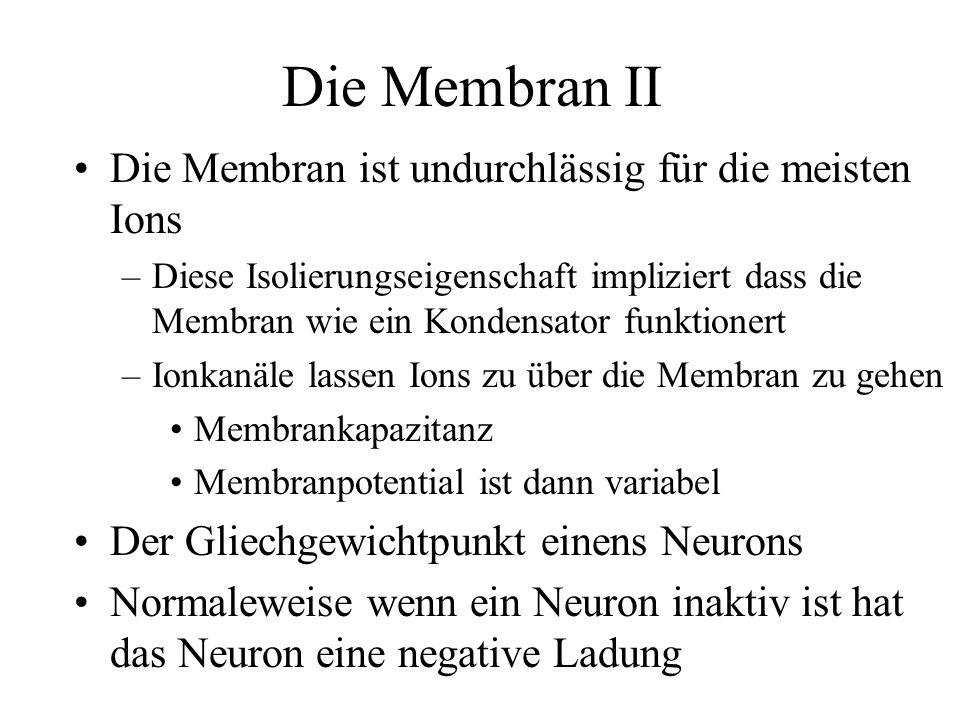 Elektrische Werte eines Neuron –Membrankapazität = C m Spezifische Membrankapazität c m = C m /A –Membranpotential = V –Membranwiderstand = R m Spezifische Membranwiderstand r m = R m /A –Membranzeitkonstante = m = R m C m