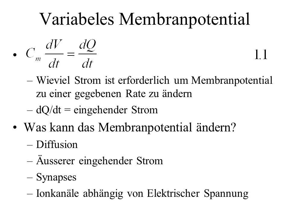 Variabeles Membranpotential –Wieviel Strom ist erforderlich um Membranpotential zu einer gegebenen Rate zu ändern –dQ/dt = eingehender Strom Was kann