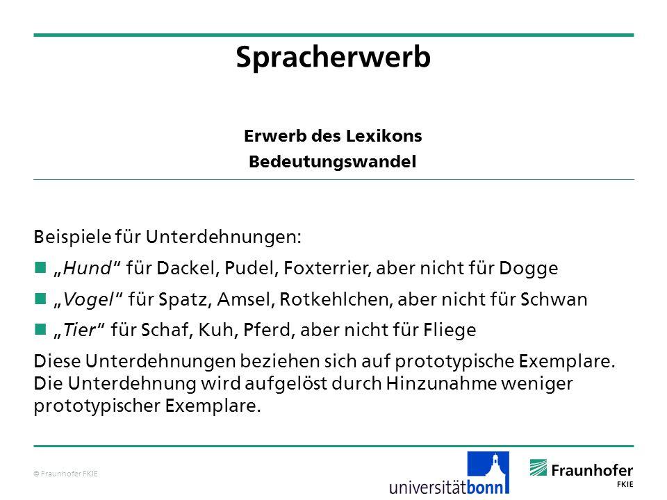 © Fraunhofer FKIE Erwerb des Lexikons Bedeutungswandel Beispiele für Unterdehnungen: Hund für Dackel, Pudel, Foxterrier, aber nicht für Dogge Vogel fü