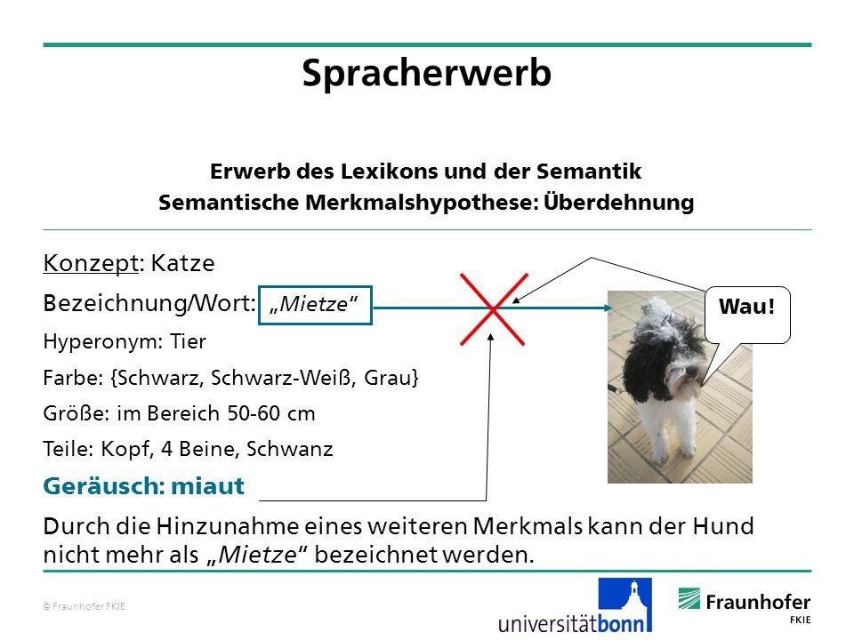 © Fraunhofer FKIE Konzept: Katze Bezeichnung/Wort: Hyperonym: Tier Farbe: {Schwarz, Schwarz-Weiß, Grau} Größe: im Bereich 50-60 cm Teile: Kopf, 4 Bein