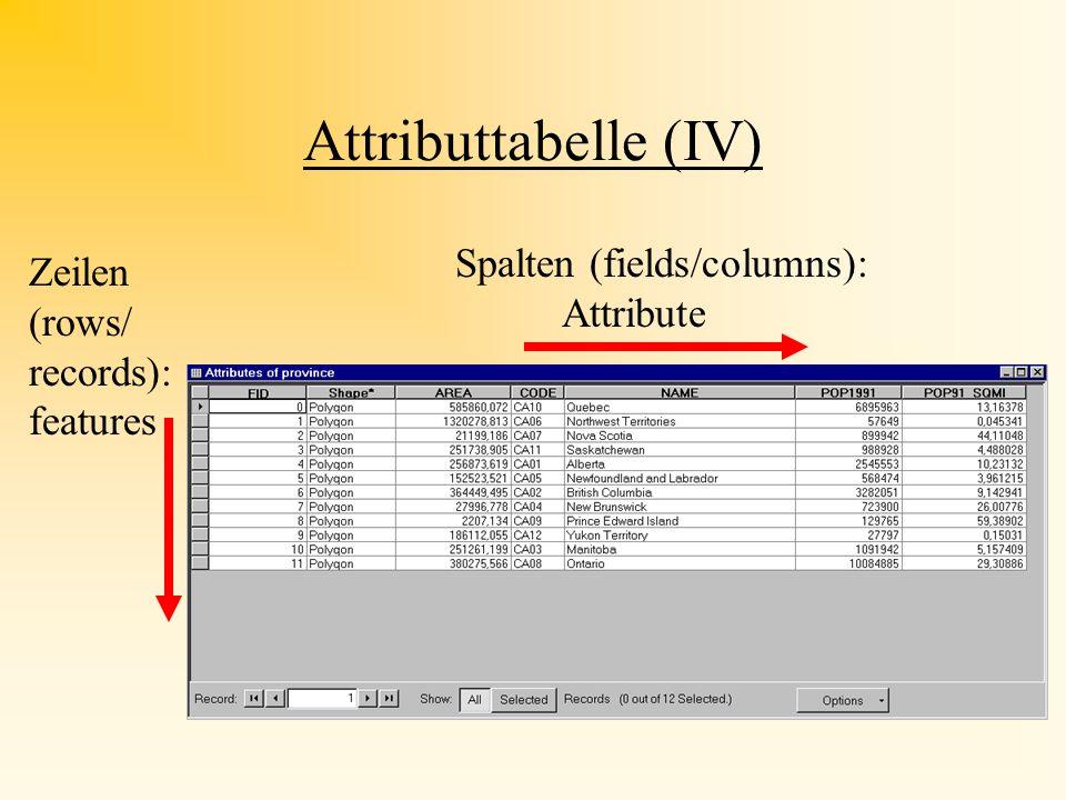 Tabellen in Arc Map Layer Shape Attributtabelle Man kann mehrere Tabellen gleichzeitig öffnen