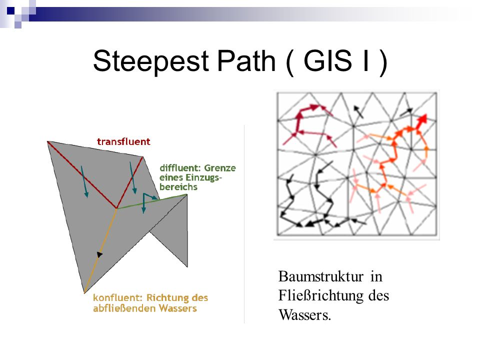 Steepest Path ( GIS I ) Baumstruktur in Fließrichtung des Wassers.